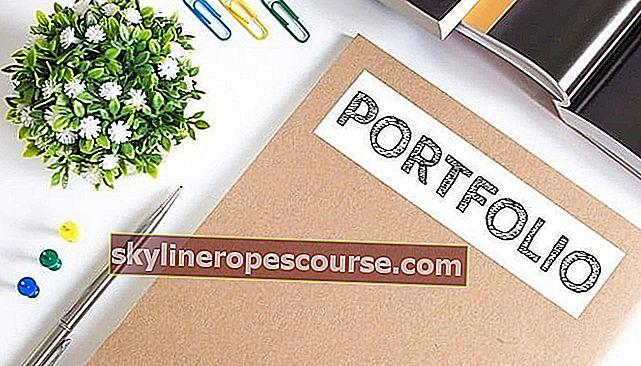 Voorbeeldportfolio (VOLLEDIG): definitie en hoe u de beste portfolio maakt