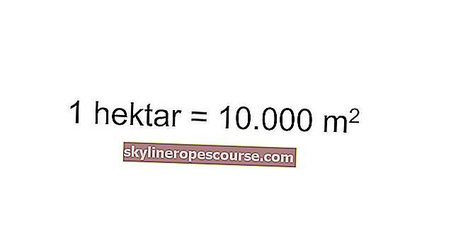 一 ヘクタール は 何 メートル