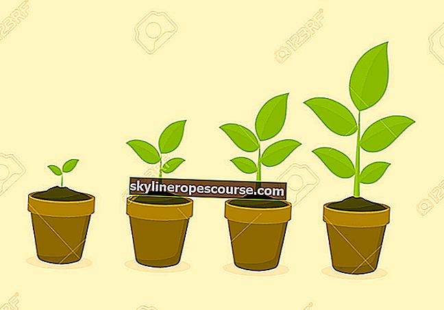 5 vrsta biljnih mreža i njihove cjelovite funkcije i slike