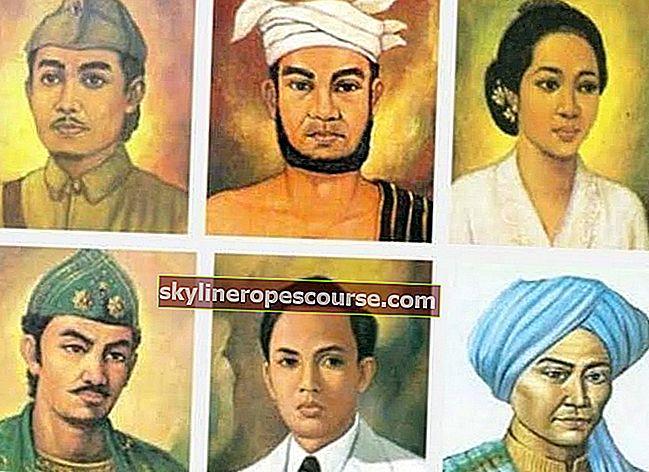 20+ nationale helden: namen, biografieën en afbeeldingen