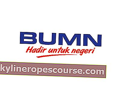 BUMN Is-定義、役割、および国営企業の例