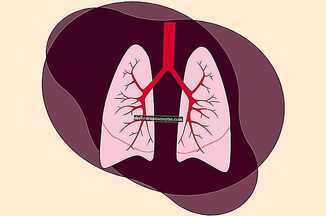 Пневмонията е: симптоми, диагностика и лечение