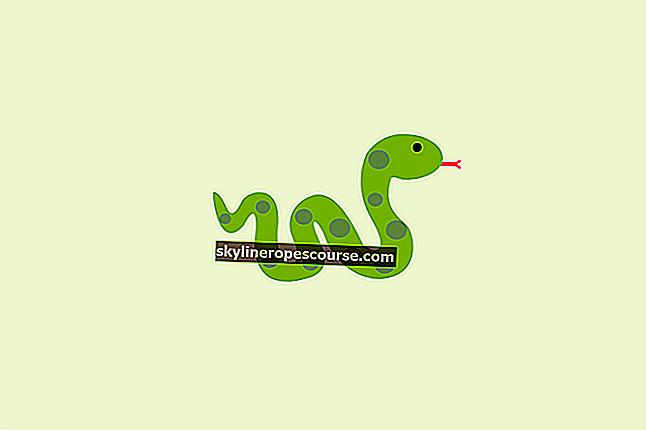最悪のヘビは何ですか?