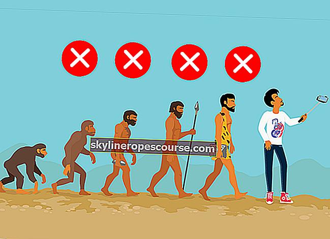 5 Missverständnisse der Evolutionstheorie, an die viele Menschen glauben