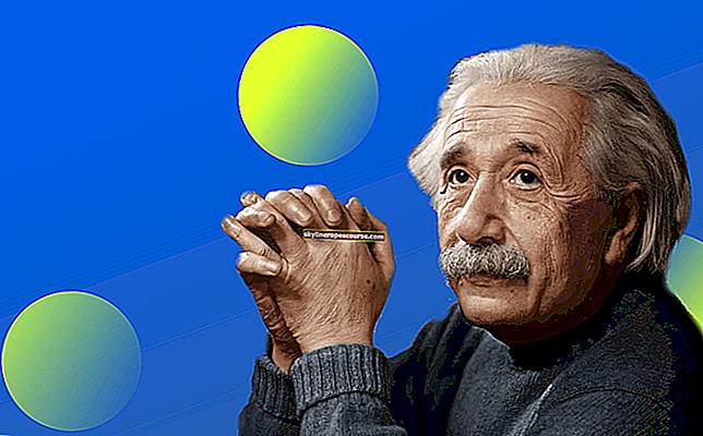 10-те навика на Айнщайн, които го направиха най-умният човек в света