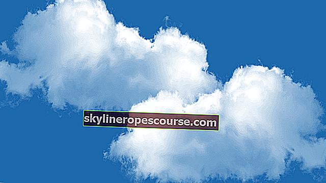 Hoe zwaar is de cloud? Het equivalent van 500 olifanten!